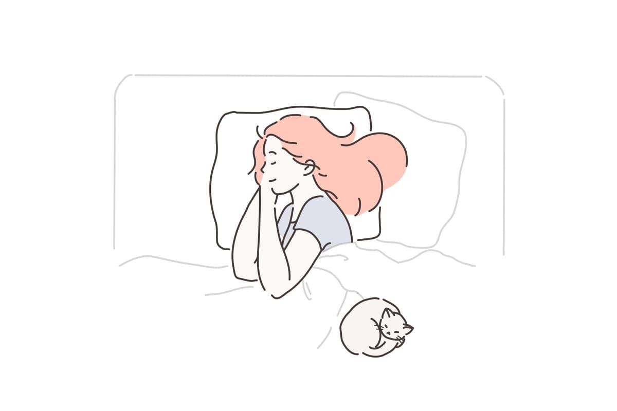 【感想】重い毛布は安眠効果あり【結論:めっちゃ眠れた】